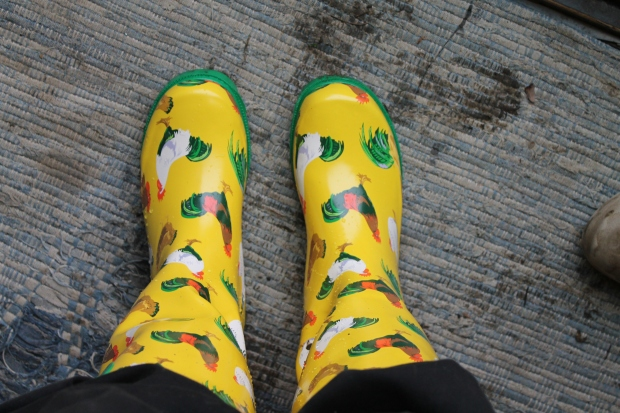 Chicken Wellies