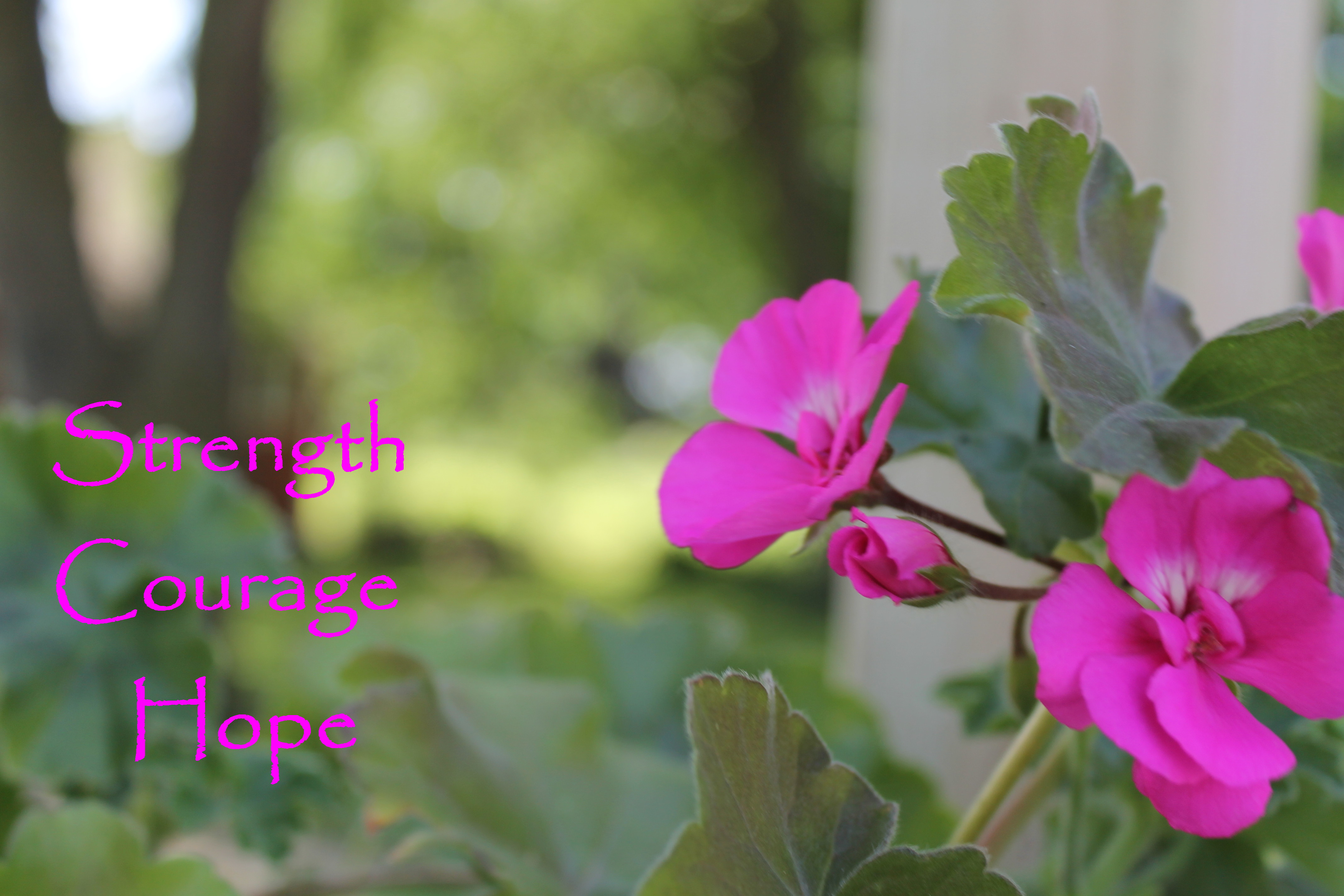 Strength Courage Hope.jpg