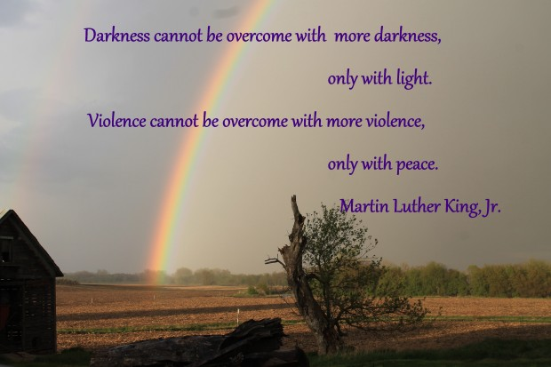 IMG_3260 A Promise  MLK quote.jpg