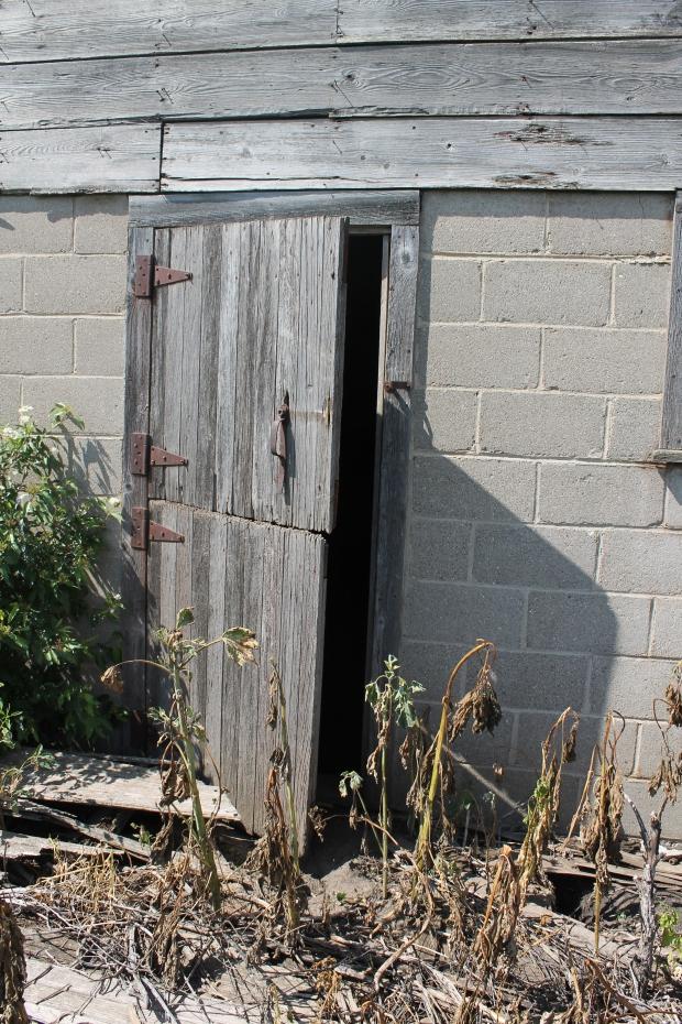 IMG_3963 Barn Doors