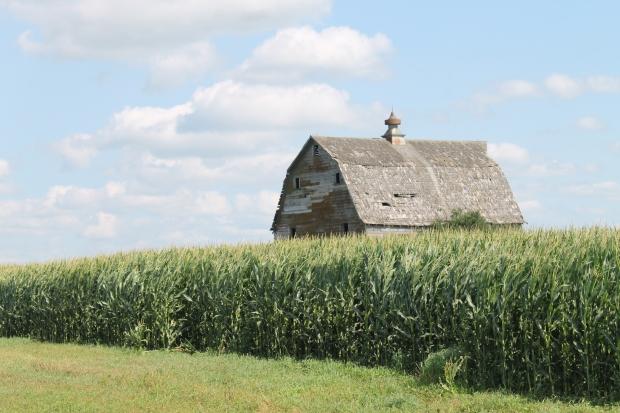 IMG_3967 Old Barn