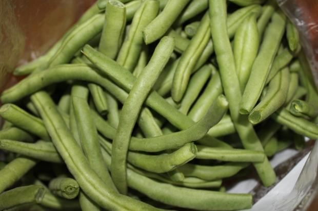 IMG_4151 Green Beans.JPG